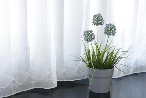 Clean Curtain