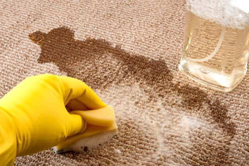 scrubbing-carpet-with-coffee-stains